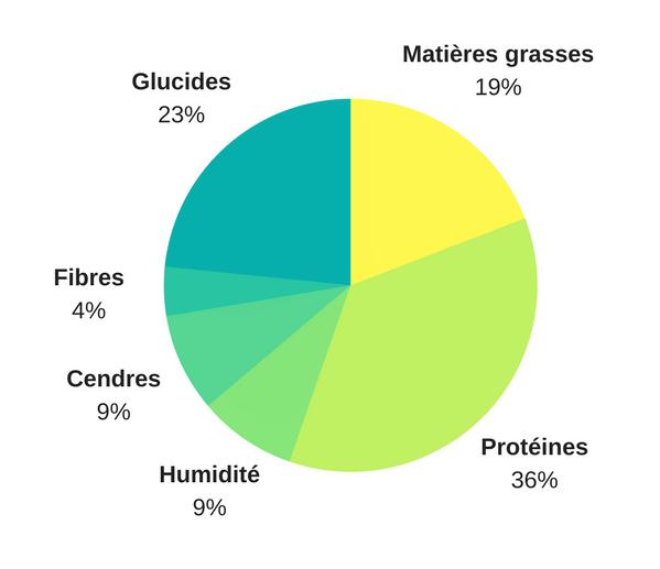 schéma d'une bonne croquette pour chien, avec les pourcentages des composants