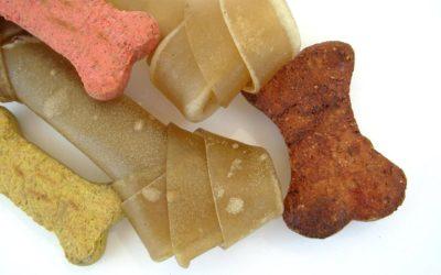 10 friandises naturelles pour chiens