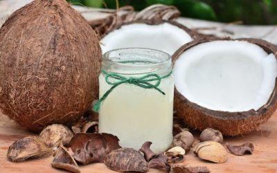 Huile de coco pour le chien – Soigner au naturel