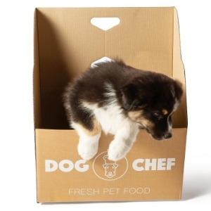 Boite Dog chef