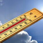 A 43°C de température corporelle pendant 40 min, il y a choc thermique chez le chien qui a un coup de chaleur
